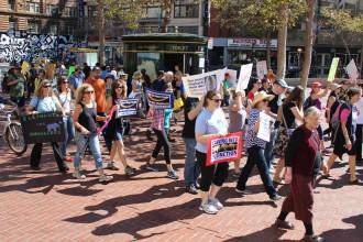 Ivory and Rhino Horn Trade protest in San Francisco. (Shara Tonn/Peninsula Press)