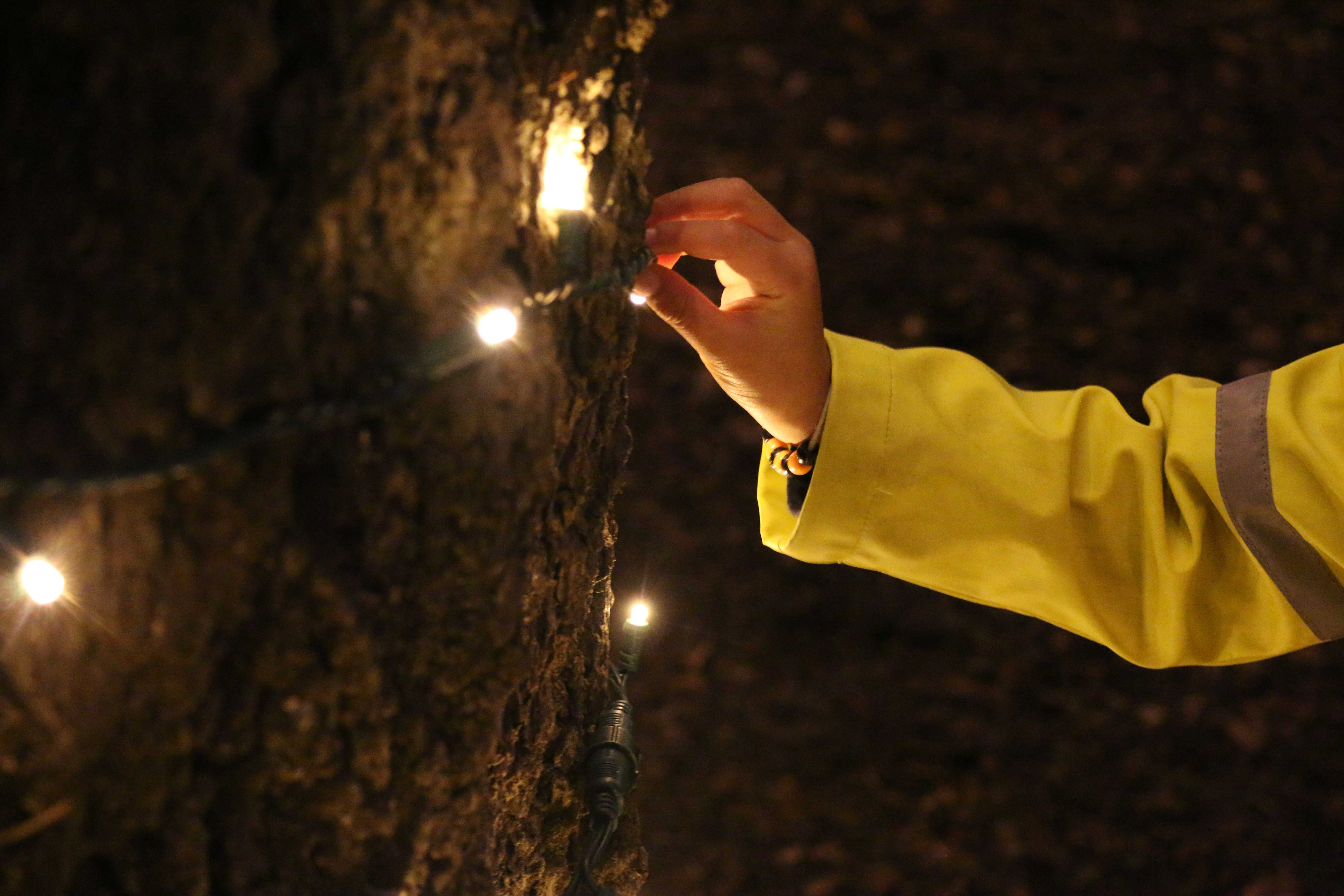 Little hands played with the twinkling tree lights throughout the event. (Phoebe Barghouty/Peninsula Press)