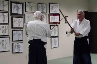 Japanese martial art Aikido (Naomi Cornman/Peninsula Press)