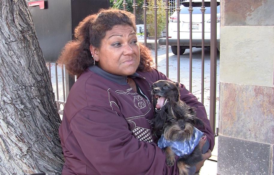 Antonia Gonzalez of San José sits near Story Road with two of her three dogs. (Jamie Stark/Peninsula Press)
