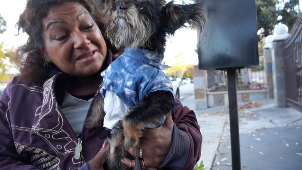 """Gonzalez holds up her dog Chico, 7, in his tie-dye shirt. """"He's always cold,"""" she said. (Jamie Stark/Peninsula Press)"""