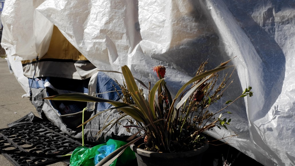 A flower and doormat rest outside a tent in San Francisco's Mission District. (Peter Arcuni/Peninsula  Press)