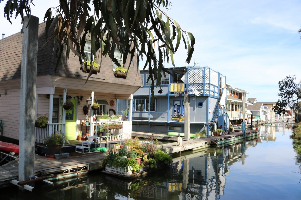 Lush gardens grow off the back decks and front porches of the floating homes at Docktown Marina in Redwood City, California. Photo taken March 11, 2017. (Bethney Bonilla/Peninsula Press)