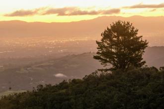 Sunrise over the California Bay Area at Windy Hill Open Space Preserve. (Kira Minehart/Peninsula Press)