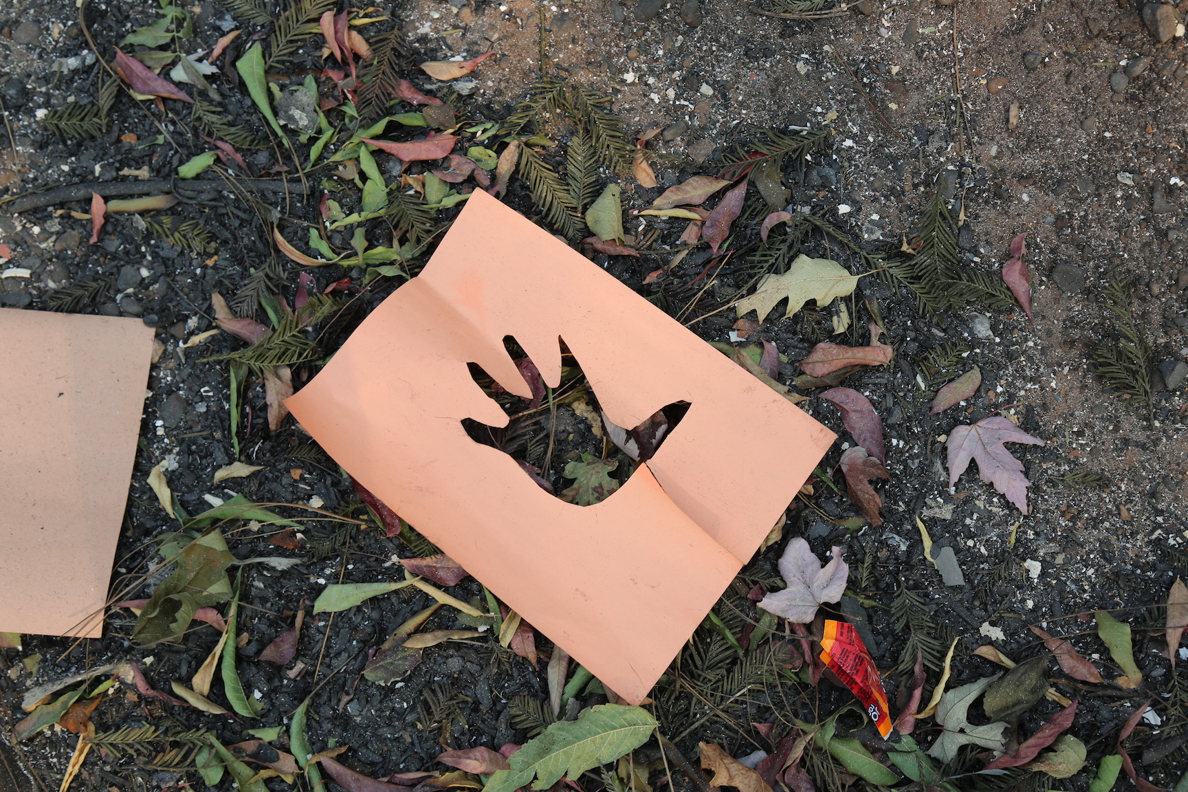 Though Paradise Elementary School's buildings were destroyed by Camp Fire, the blaze spared patches of the school yard, leaving candy wrappers and art projects, like this cutout of a child's hand.  Isabella Jibilian/Peninsula Press