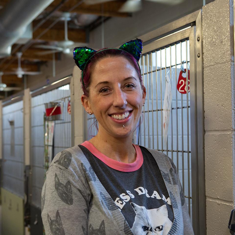 Sarah Varanini, Sacramento SPCA's media specialist, is dressed as a cat for Halloween.  She stands in front of dog cages at the adoption floor on Thursday, Oct. 31, 2019 in Sacramento, Calif. (Salma Loum/ Peninsula Press)