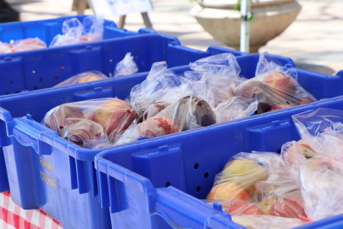 Apples wrapped in plastic